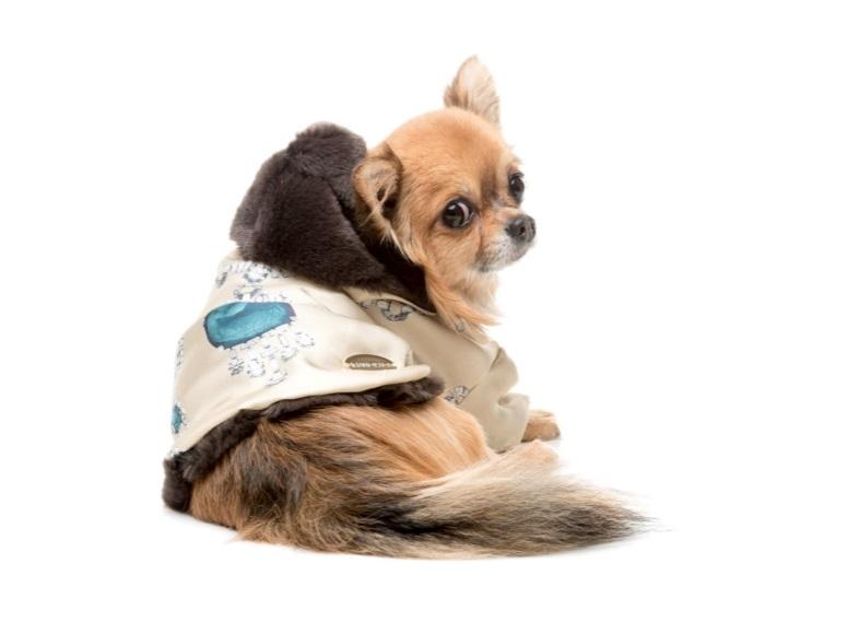 Karácsonyi akció. 30% kedvezmény minden téli kutyakabátra.