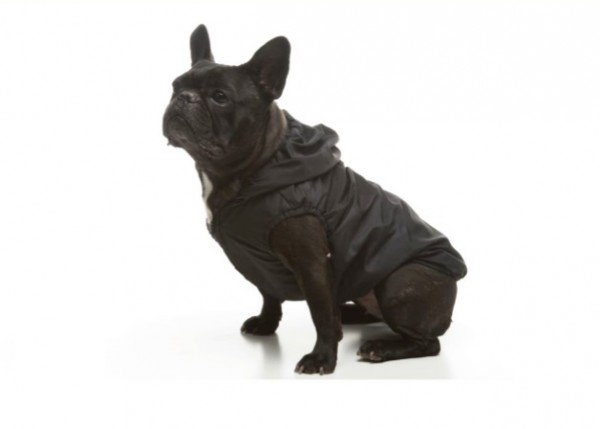 Basic Bulldog Esőkabát