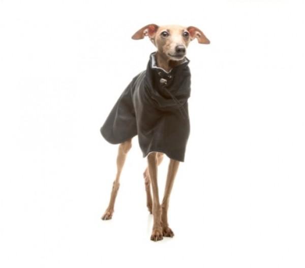 Kutya Esőkabát