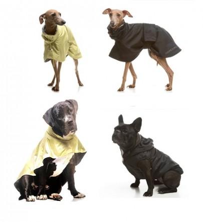 Minden kutya esőkabát 15% kedvezménnyel